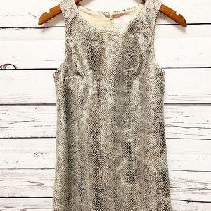 Romeo & Juliet Snake Print Sleeveless Dress Size S